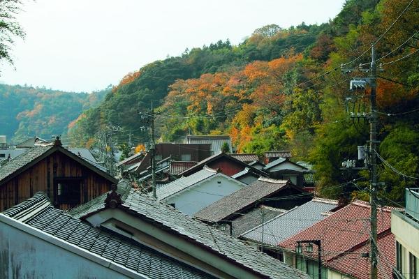 テラスから見た温泉津の街並み。写真は薬師湯公式ページからお借りしました。